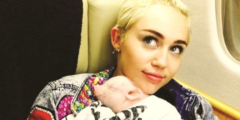 Miley Cyrus com sua porquinha ainda bebê